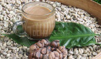 กาแฟขี้ชะมด (Kopi Luwak)